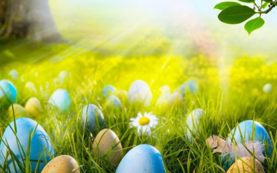 6909_Easter-eggs-in-the-sunlight-beautiful-HD-spring-Holiday