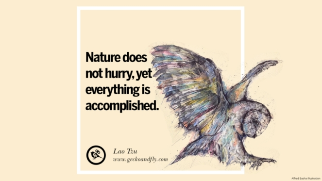 nature-earth-quotes-13-830x467.jpg
